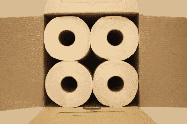 Klopapier / Toilettenpapier aus Bambus